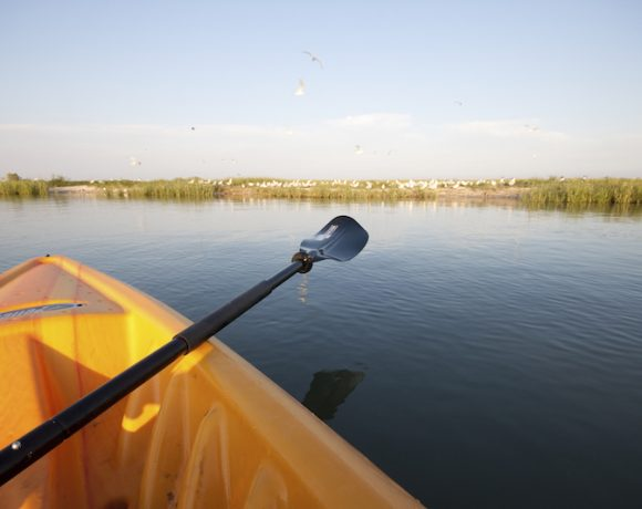Kayak Adventure @ Coastal Heritage Preserve | Galveston | Texas | United States