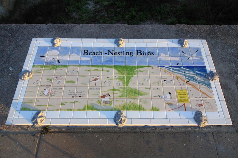 Nesting Birds of Galveston